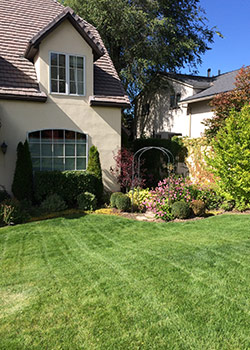 Landscaping Service in Salt Lake City UT